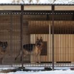 Изготовление Вольеров для собак и других животных., Рязань